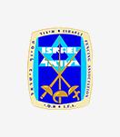 Israel Fencing Association